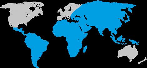 Diphtheria Map