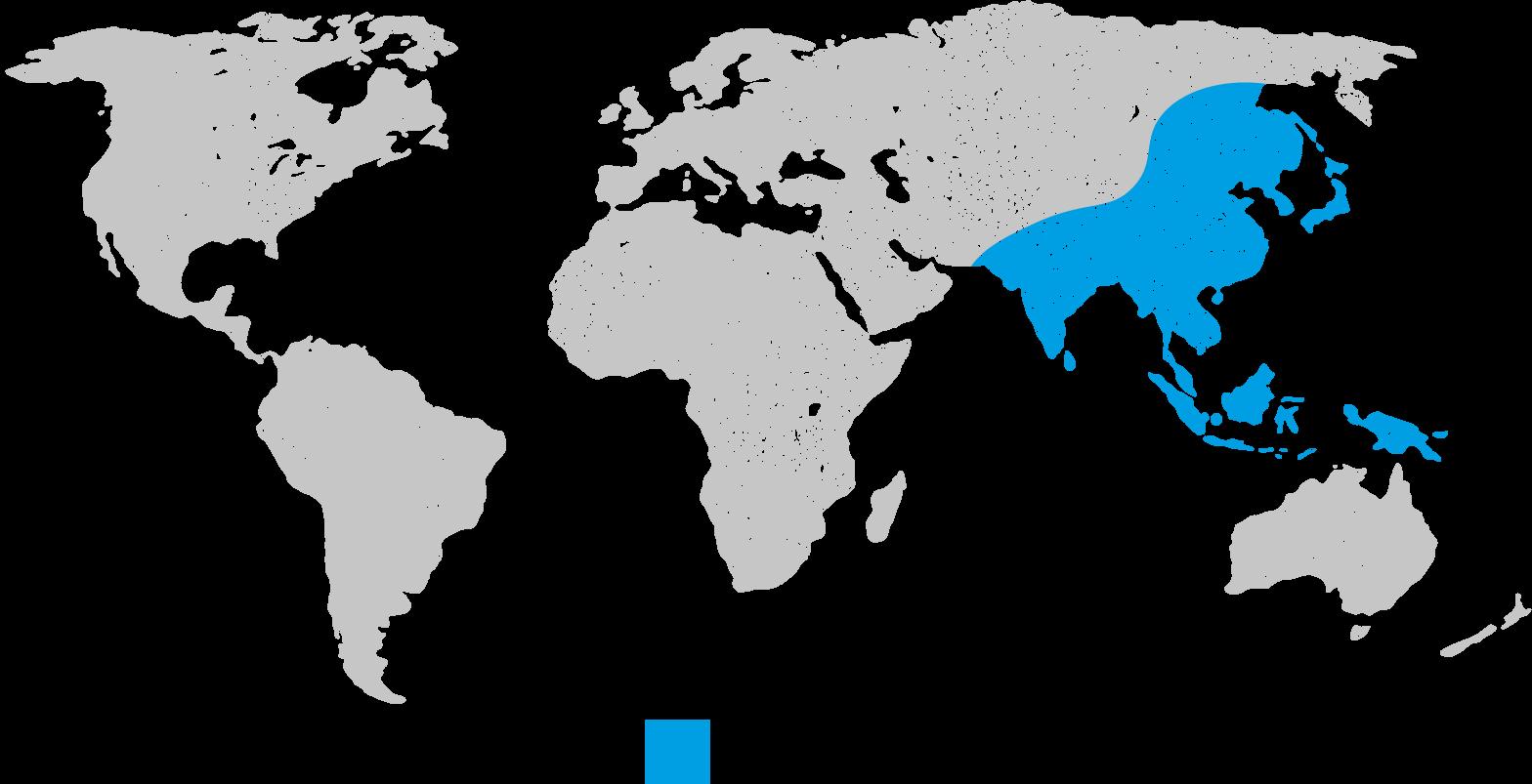 japanese-encephalitis-disease-map   Nomad on